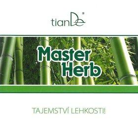 Brožura Detoxikační náplasti Master Herb